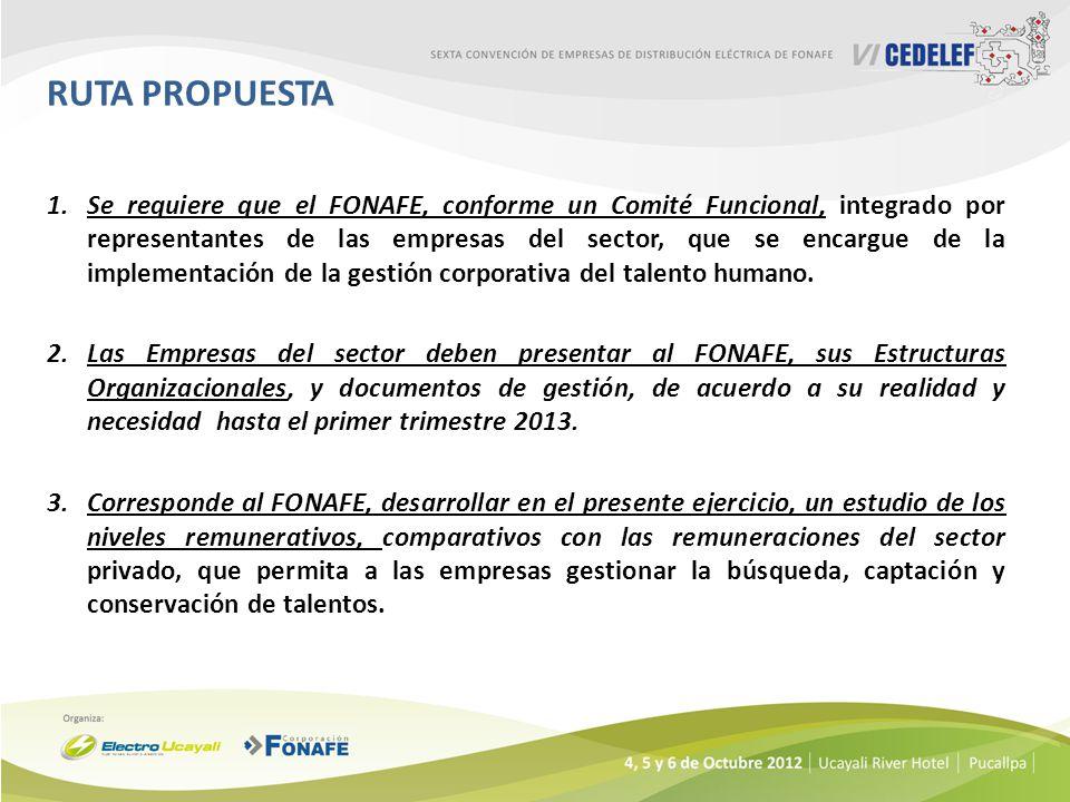 1.Se requiere que el FONAFE, conforme un Comité Funcional, integrado por representantes de las empresas del sector, que se encargue de la implementaci