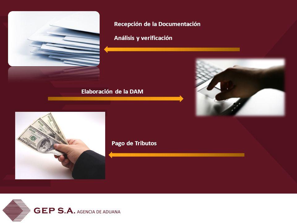 Recepción de la Documentación Análisis y verificación Elaboración de la DAM Pago de Tributos