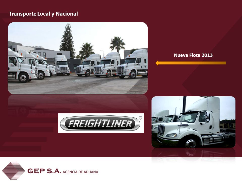 Nueva Flota 2013 Transporte Local y Nacional