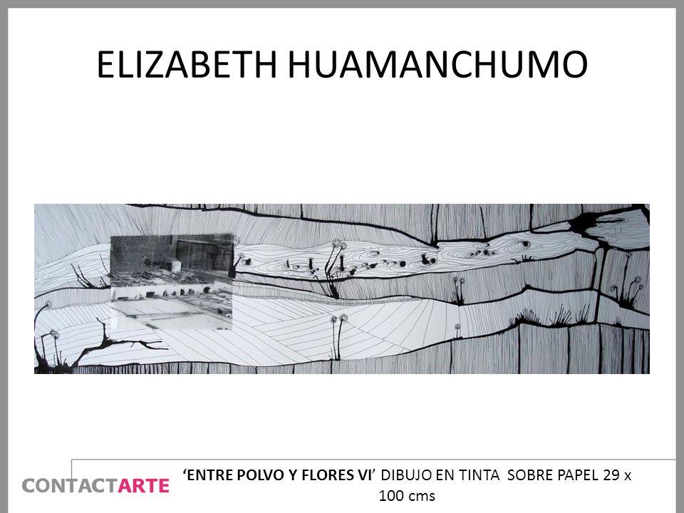 ELIZABETH HUAMANCHUMO ENTRE POLVO Y FLORES VI DIBUJO EN TINTA SOBRE PAPEL 29 x 100 cms