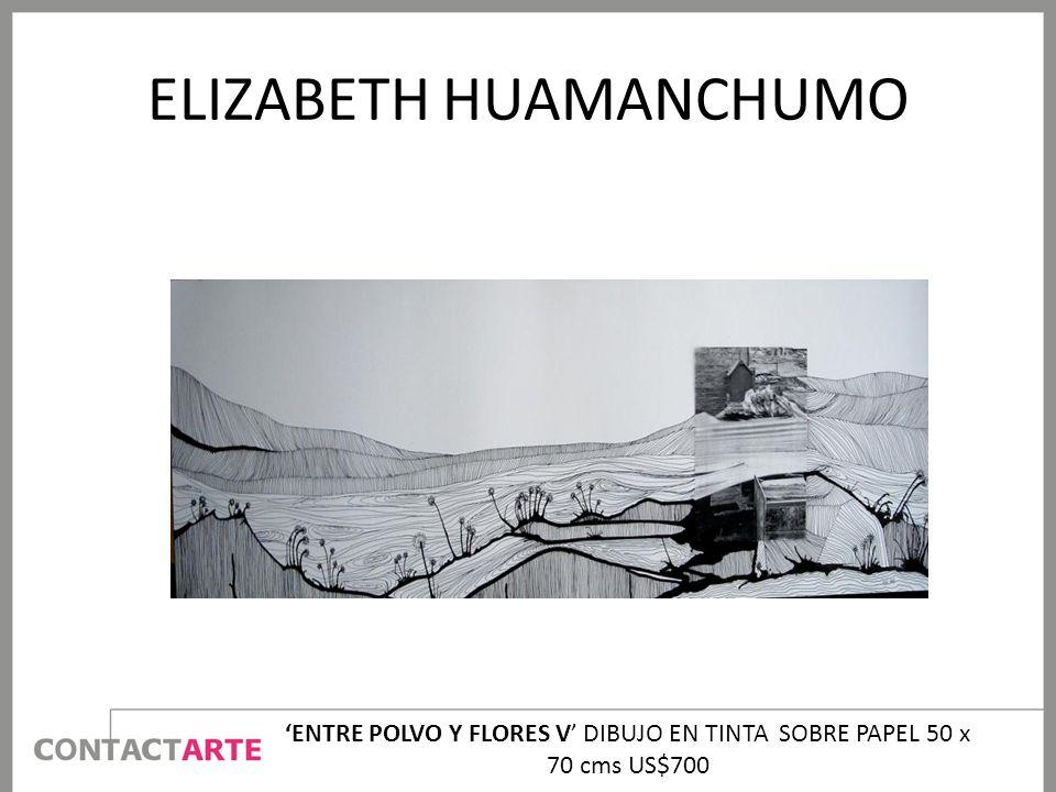ELIZABETH HUAMANCHUMO ENTRE POLVO Y FLORES V DIBUJO EN TINTA SOBRE PAPEL 50 x 70 cms US$700