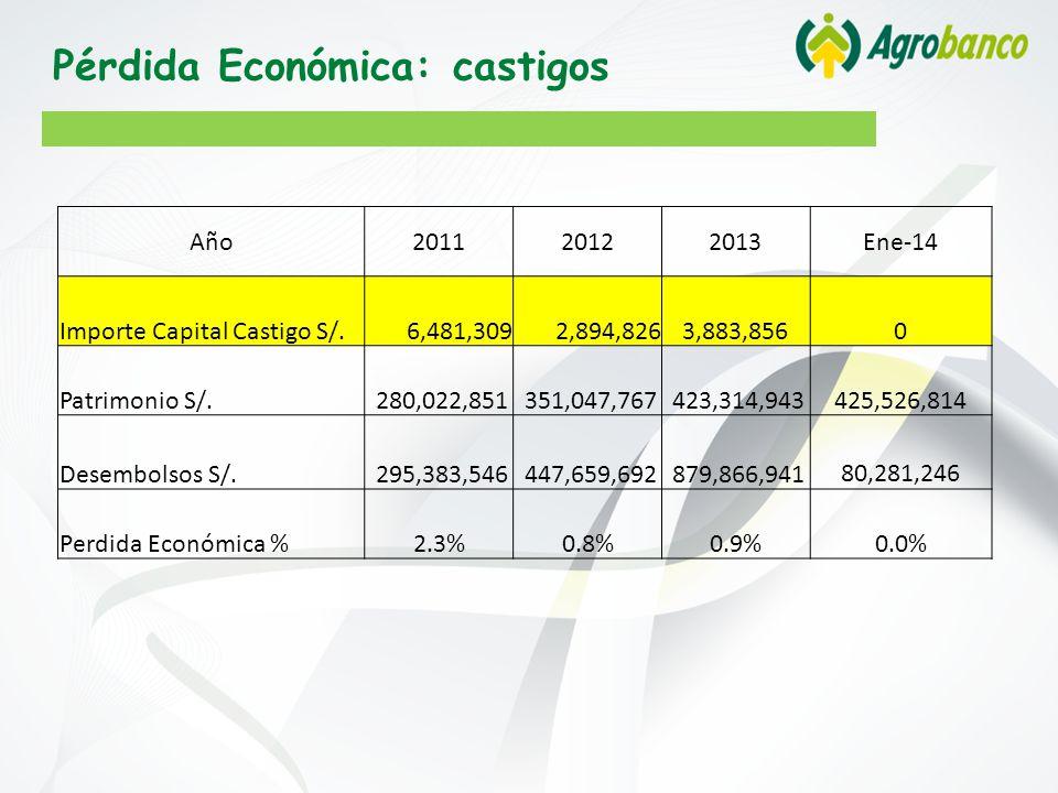 Pérdida Económica: castigos Año201120122013Ene-14 Importe Capital Castigo S/.6,481,3092,894,8263,883,8560 Patrimonio S/.