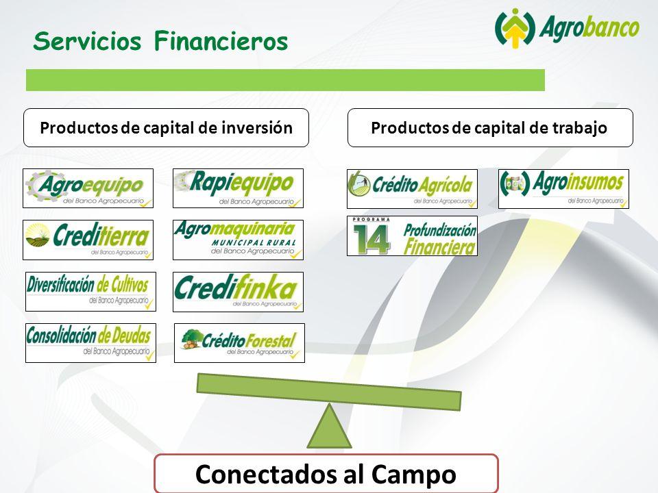 Productos de capital de inversiónProductos de capital de trabajo Conectados al Campo Servicios Financieros