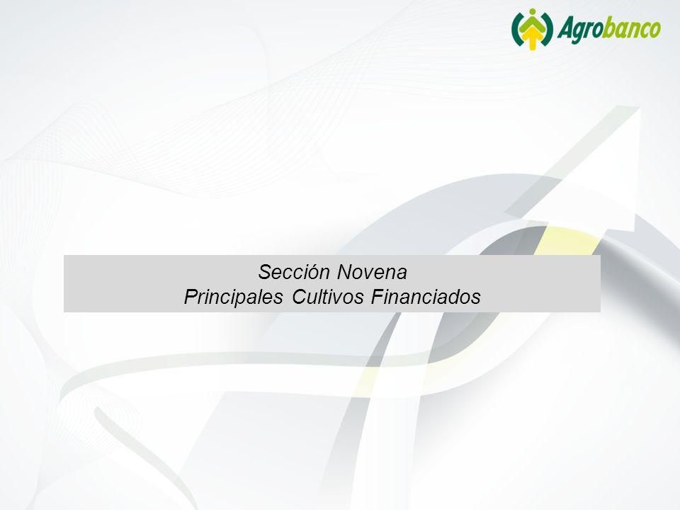 Sección Novena Principales Cultivos Financiados
