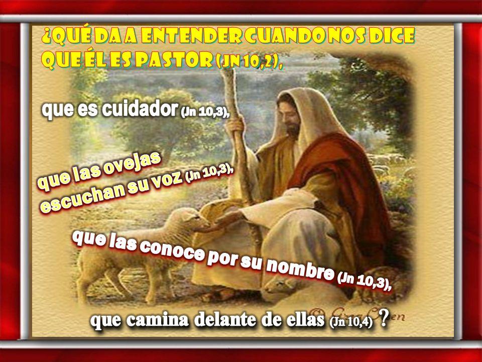 Cada uno puede leer en voz alta el versículo que más le llamó la atención ( Del evangelio según san Juan ) Jn 10: 1-10 En aquel tiempo, dijo Jesús: 1