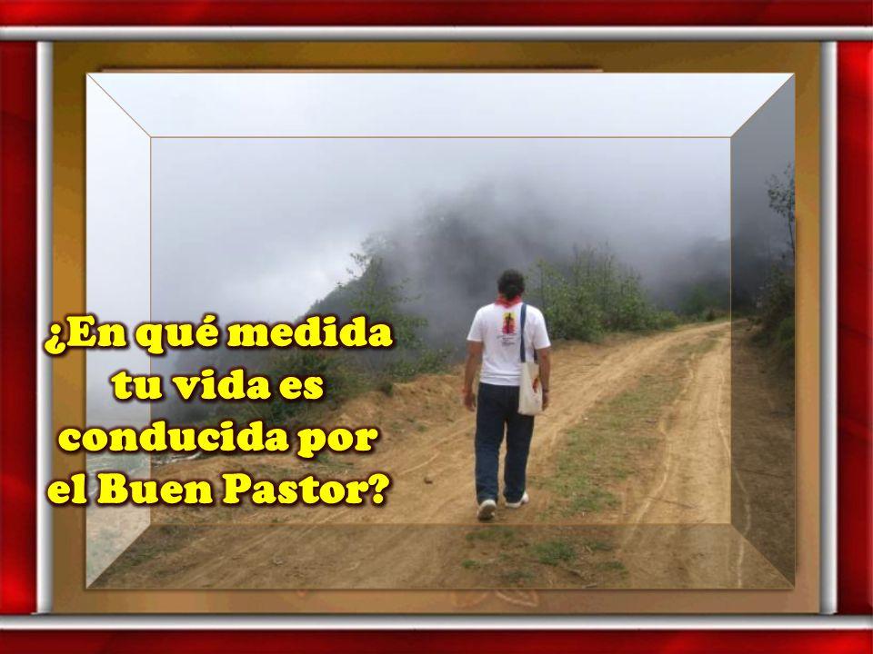 ¿Cómo podrías ser para los demás pastor y puerta?
