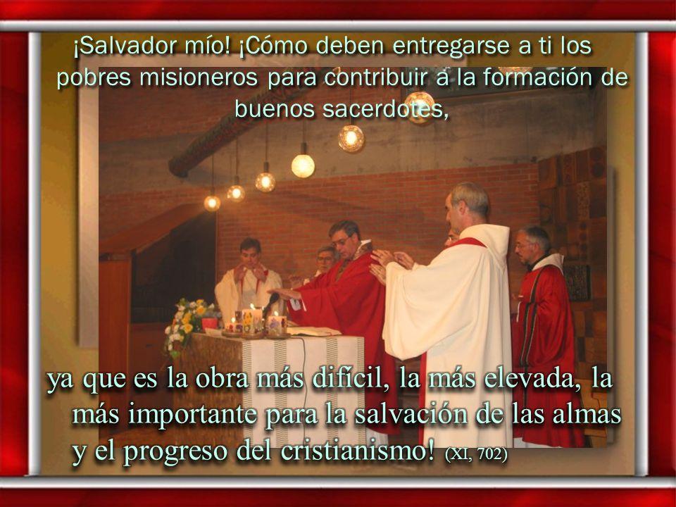 ¡Cuánto hemos de procurar hacer que todos sean buenos, ya que es ésa nuestra misión, y el sacerdocio es una cosa tan elevada! ¡Cuánto hemos de procura