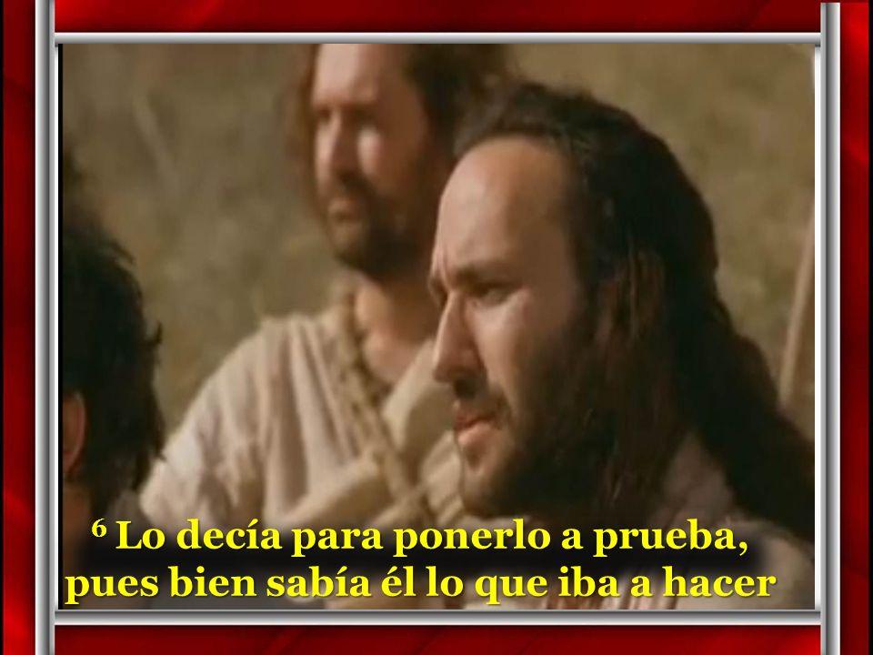 5 Jesús entonces levantó los ojos y al ver que acudía mucha gente, dice a: –¿Dónde compraremos panes para dar de comer a toda esta gente?