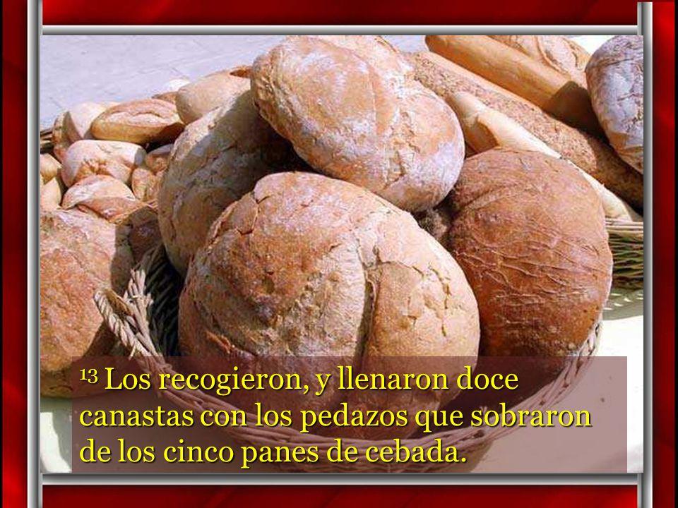 12 Cuando se saciaron, dice a sus discípulos: – «Recojan los pedazos que han sobrado; que nada se desperdicie.»