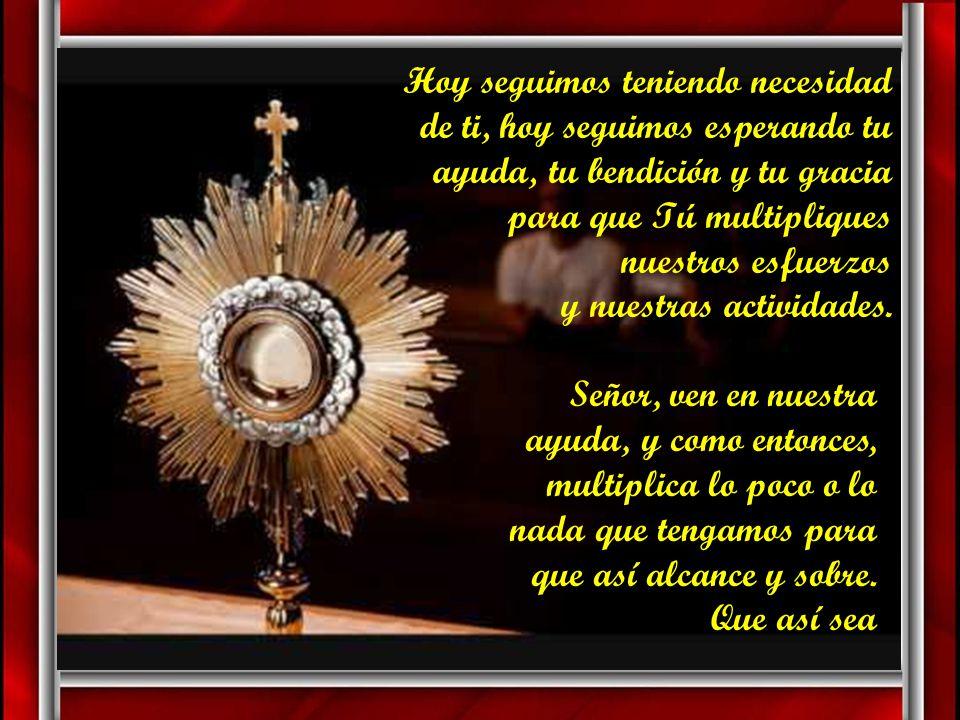 Señor Jesús, Señor Jesús, …¿dónde podremos conseguir pan para que coman?..., preguntaste a tus discípulos viendo a la multitud, y hoy seguimos pregunt