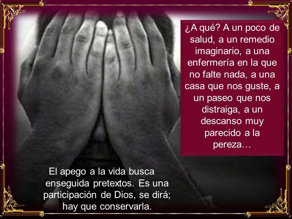 En efecto, esta preocupación por vivir, este miedo a sufrir y esta debilidad de algunos que ponen todo su espíritu, capaz de cosas buenas, en el cuidado de su pobre vida, son un obstáculo para el servicio de Dios.