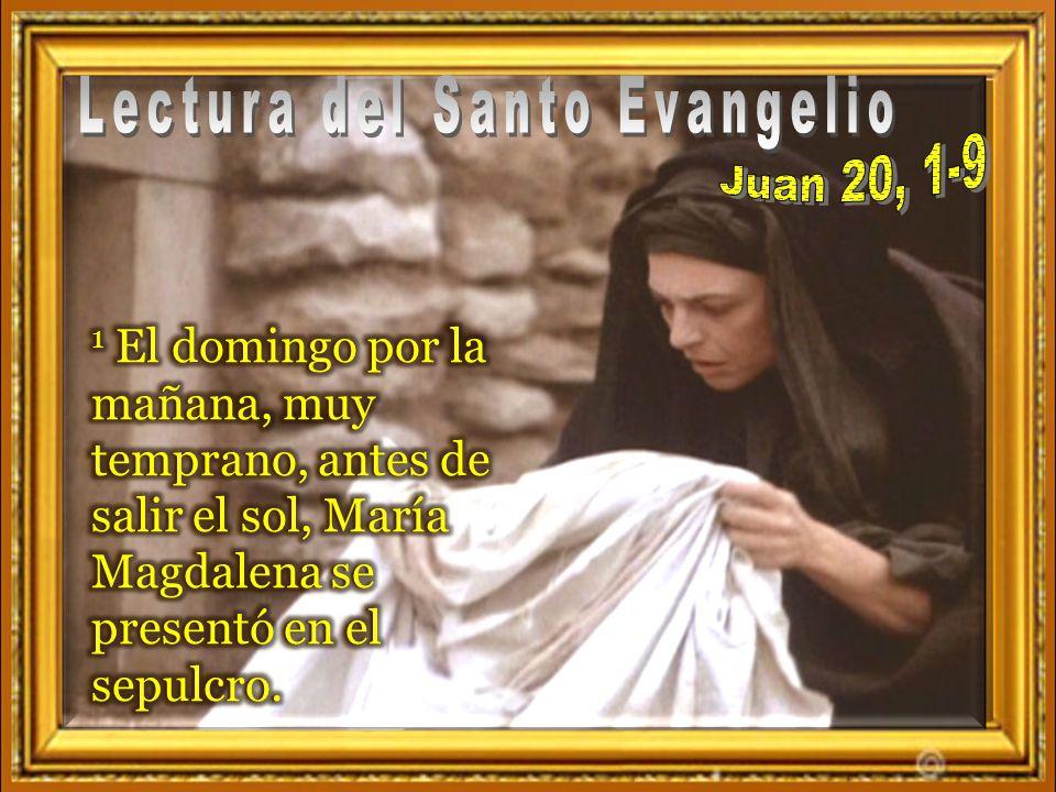 Cada uno puede leer en voz alta el versículo que más le llamó la atención Juan 20, 1-9 1 El primer día de la semana va María Magdalena de madrugada al sepulcro cuando todavía estaba oscuro, y ve la piedra quitada del sepulcro.
