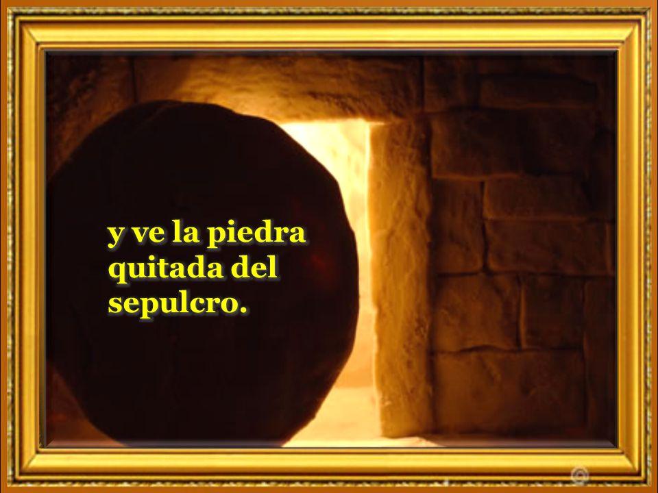 Nuestro corazón te canta jubiloso, Dios Padre de la vida.