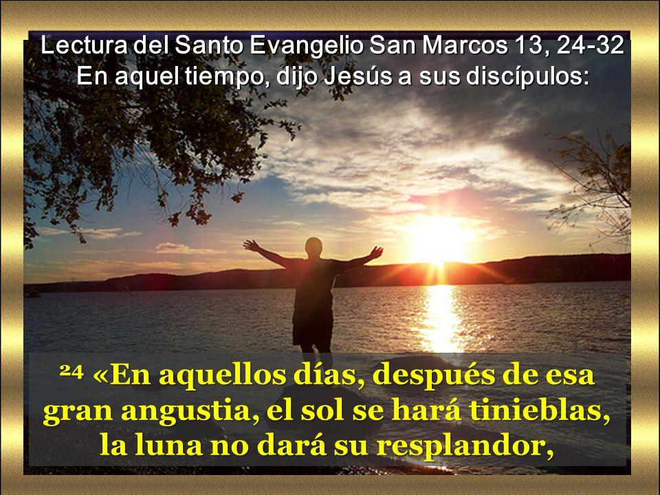 24 «En aquellos días, después de esa gran angustia, el sol se hará tinieblas, la luna no dará su resplandor, Lectura del Santo Evangelio San Marcos 13, 24-32 En aquel tiempo, dijo Jesús a sus discípulos: