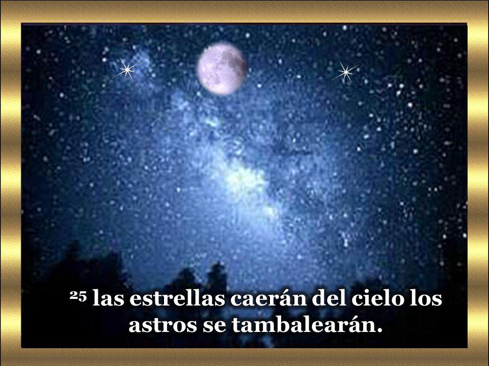 24 «En aquellos días, después de esa gran angustia, el sol se hará tinieblas, la luna no dará su resplandor, Lectura del Santo Evangelio San Marcos 13