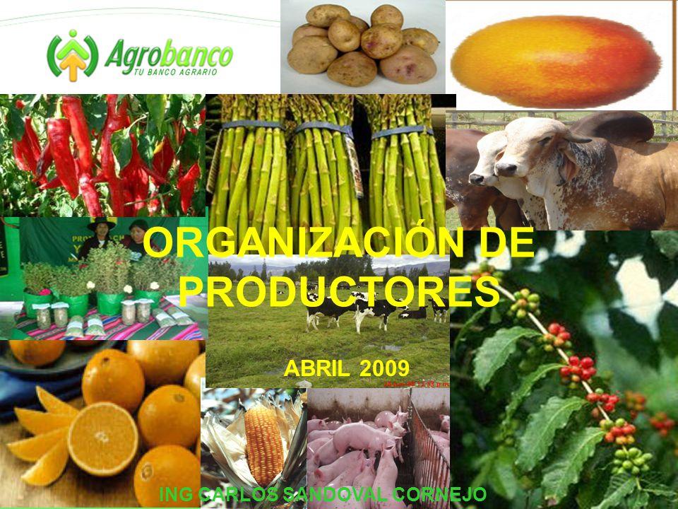 ORGANIZACIÓN DE PRODUCTORES ABRIL 2009 ING CARLOS SANDOVAL CORNEJO