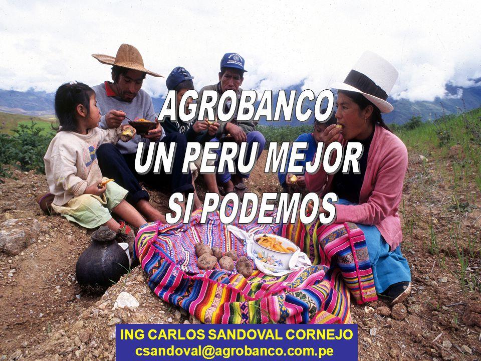 ING CARLOS SANDOVAL CORNEJO csandoval@agrobanco.com.pe