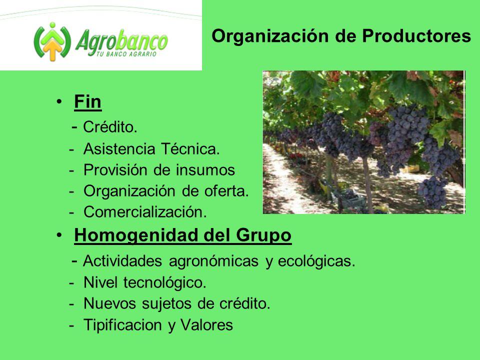 Organización de Productores Fin - Crédito. - Asistencia Técnica.