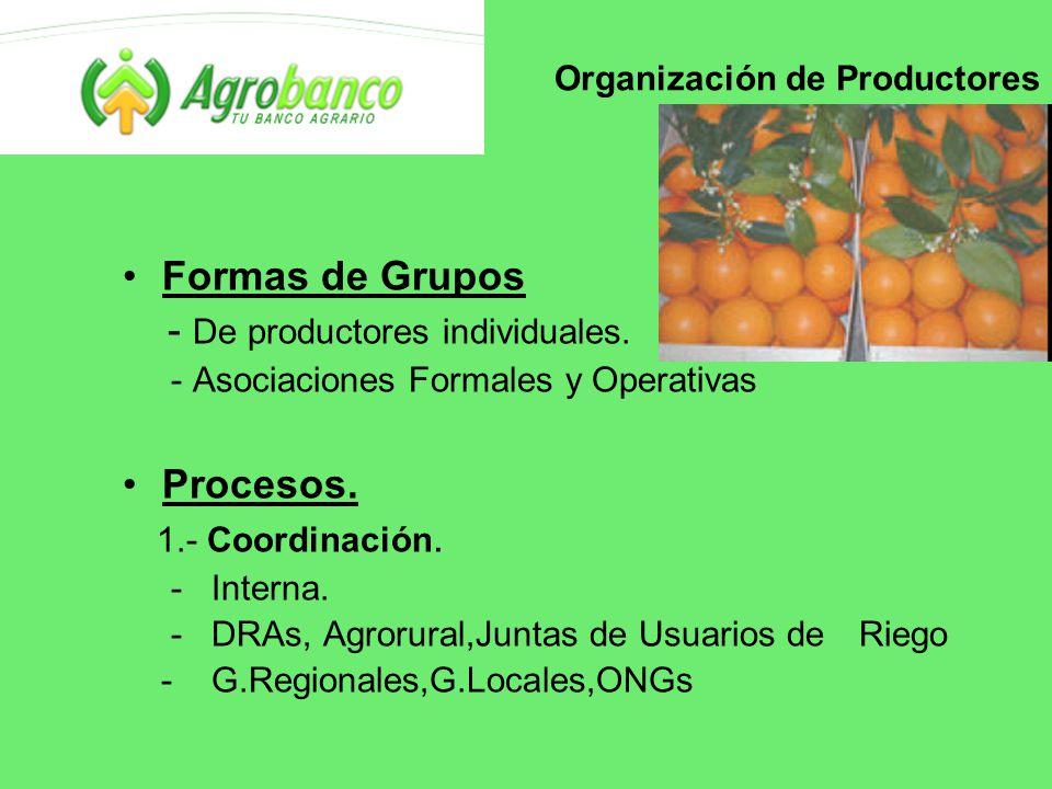 Organización de Productores Formas de Grupos - De productores individuales.