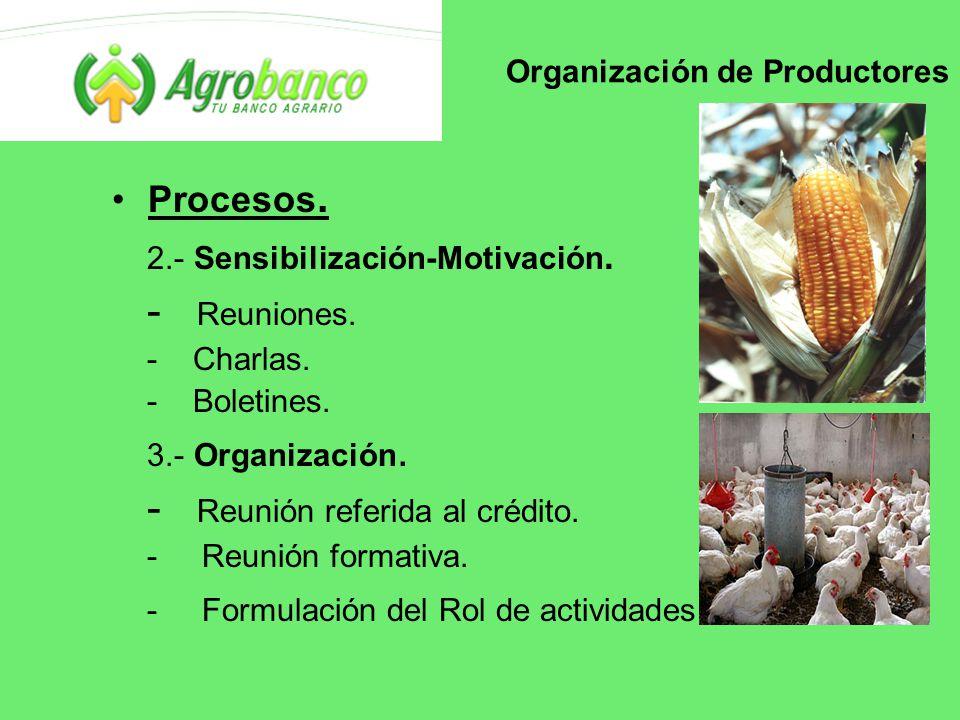 Organización de Productores Procesos. 2.- Sensibilización-Motivación.