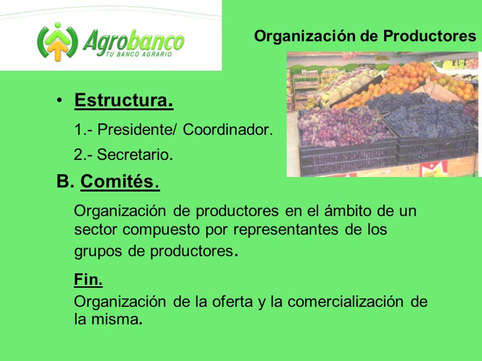 Organización de Productores Estructura. 1.- Presidente/ Coordinador.
