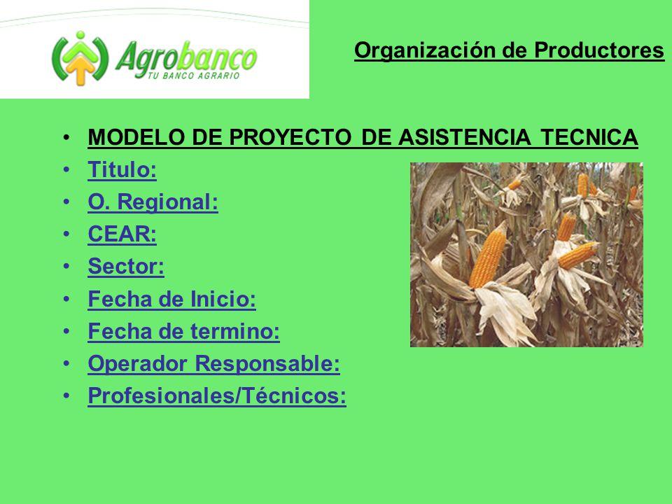 Organización de Productores MODELO DE PROYECTO DE ASISTENCIA TECNICA Titulo: O.