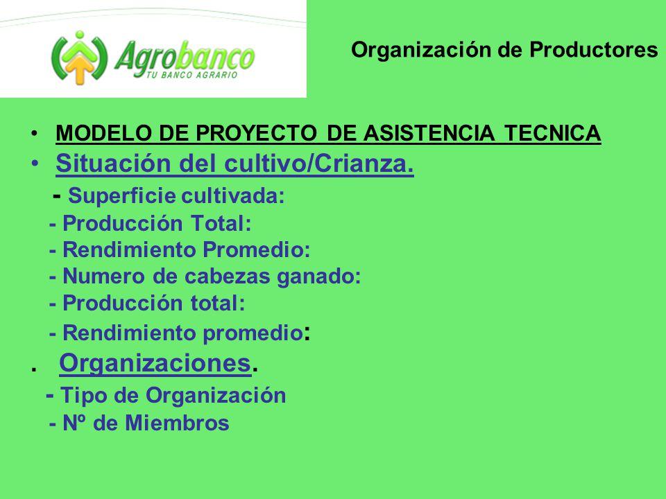 Organización de Productores MODELO DE PROYECTO DE ASISTENCIA TECNICA Situación del cultivo/Crianza.