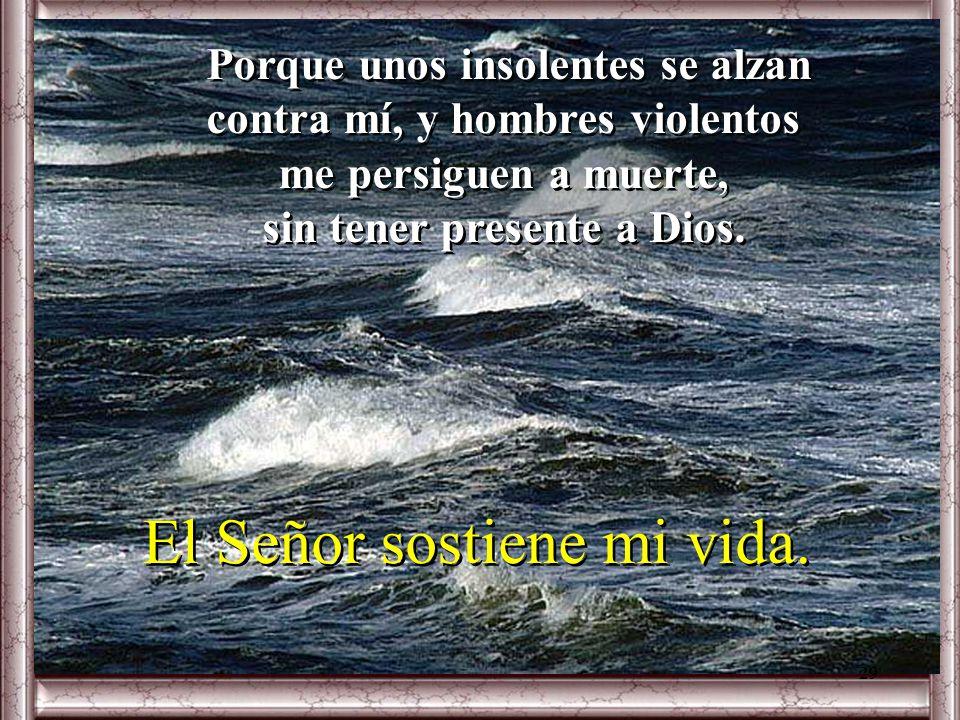 Salmo 53 Oh Dios, Sálvame por tu nombre, sal por mí con tu poder. ¡Oh Dios, escucha mi súplica, atiende a mis palabras! Oh Dios, Sálvame por tu nombre
