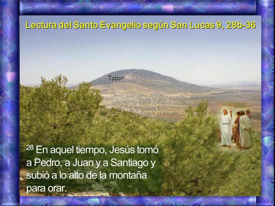 28 En aquel tiempo, Jesús tomó a Pedro, a Juan y a Santiago y subió a lo alto de la montaña para orar.