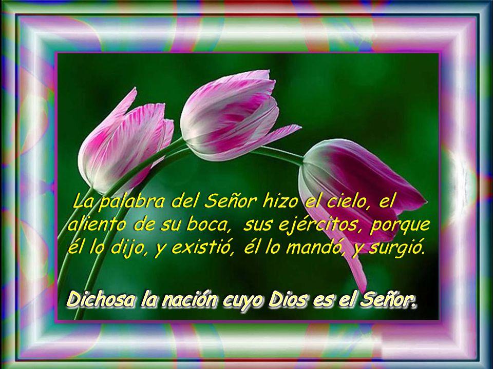 Salmo 32 L a palabra del Señor es sincera, y todas sus acciones son leales; él ama la justicia y el derecho, y su misericordia llena la tierra L a pal