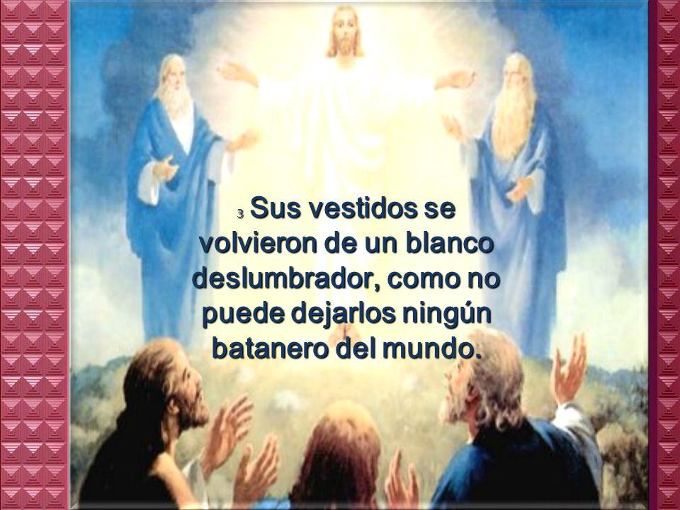 2 En aquel tiempo, Jesús se llevó a Pedro, a Santiago y a Juan, subió con ellos solos a una montaña alta, y se transfiguró delante de ellos.