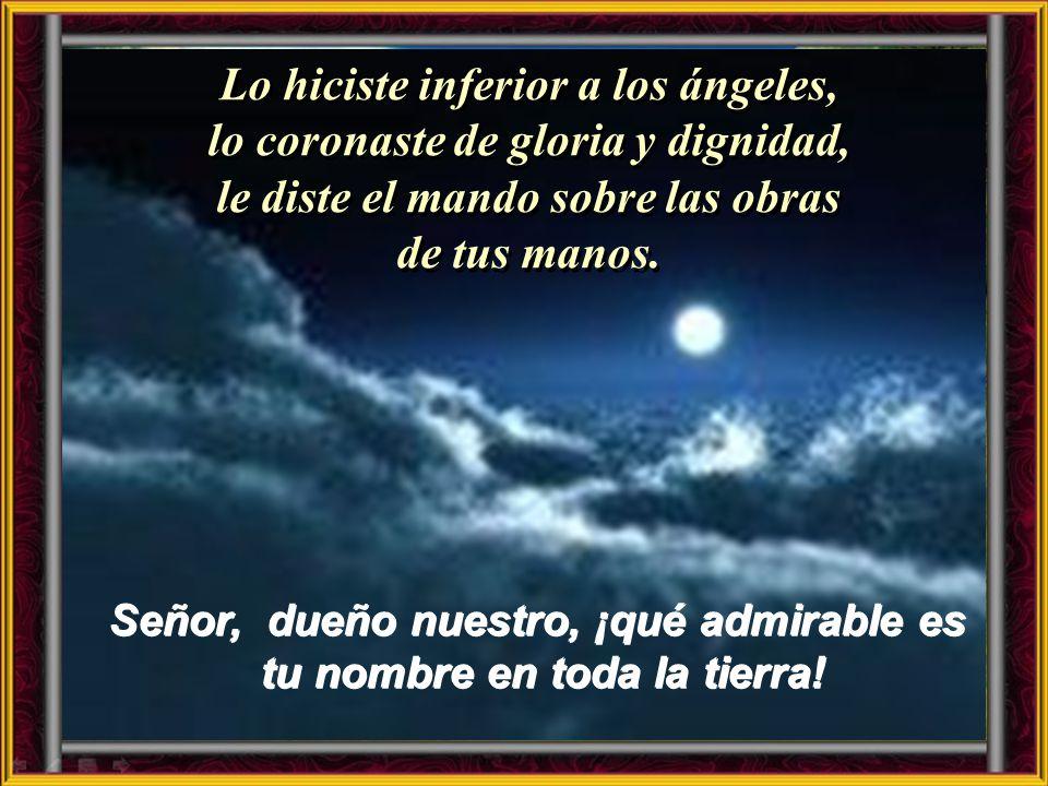 Salmo 8 Cuando contemplo el cielo, obra de tus dedos, la luna y las estrellas has creado, ¿qué es el hombre, para que te acuerdes de él, el ser humano