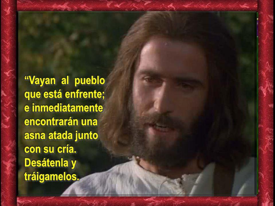 Lectura del Evangelio según San Mateo 21, 1-11Lectura del Evangelio según San Mateo 21, 1-11