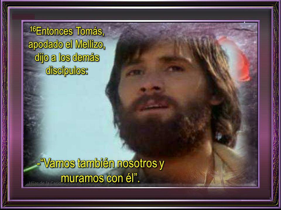 14 Entonces Jesús les dijo claramente: -Lázaro ha muerto.