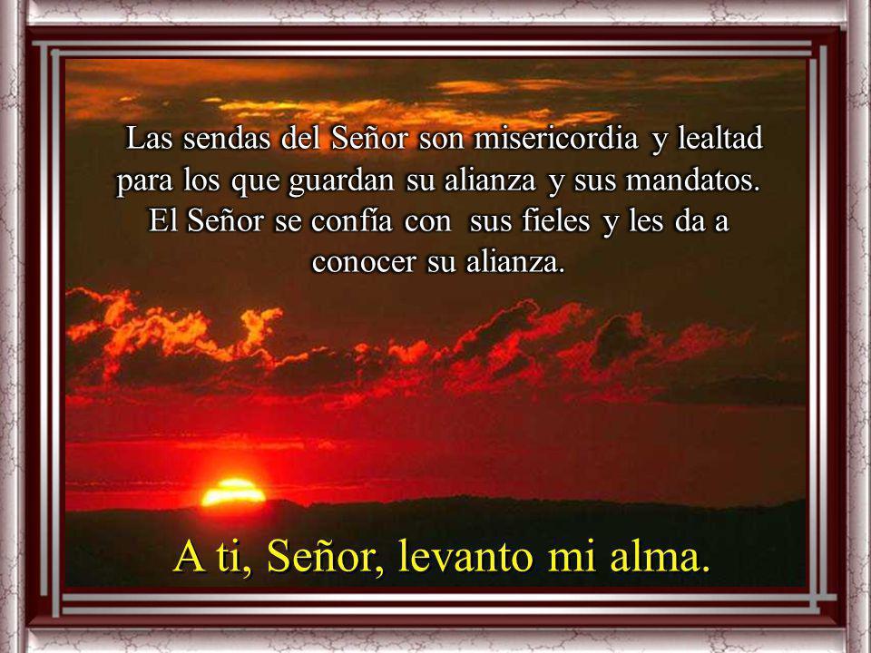 A ti, Señor, levanto mi alma. El Señor es bueno y es recto, y enseña el camino a los pecadores; hace caminar a los humildes con rectitud, enseña su ca