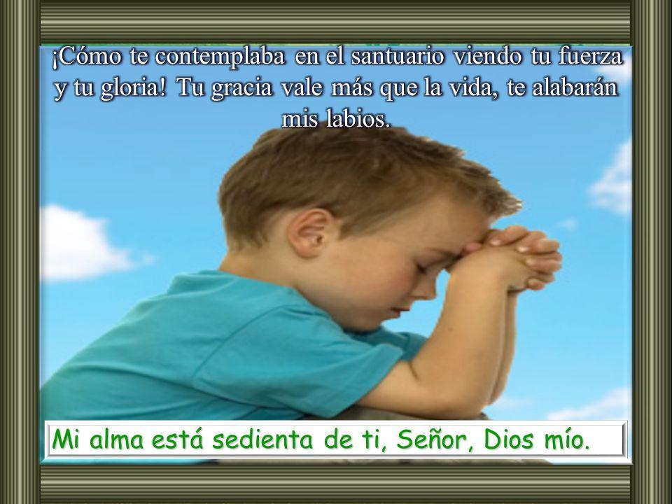Salmo 62 Oh Dios, tú eres mi Dios, por ti madrugo, mi alma está sedienta de ti; mi carne tiene ansia de ti, como tierra reseca, sedienta, sin agua. Mi