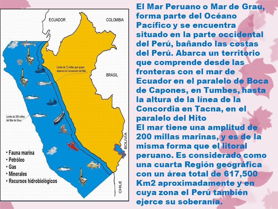El Mar Peruano o Mar de Grau, forma parte del Océano Pacífico y se encuentra situado en la parte occidental del Perú, bañando las costas del Perú.