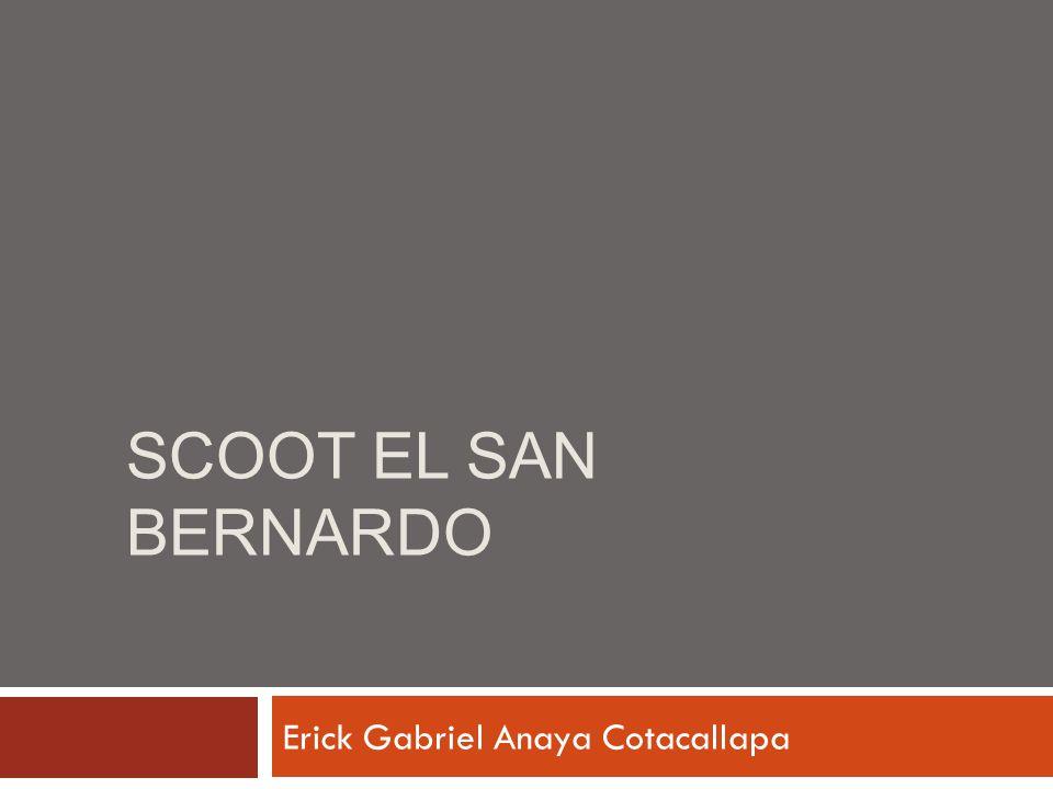SCOOT EL SAN BERNARDO Erick Gabriel Anaya Cotacallapa