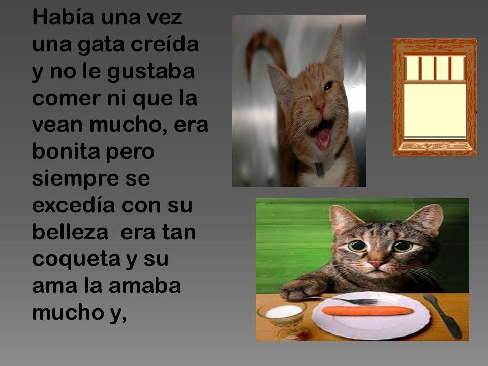 Había una vez una gata creída y no le gustaba comer ni que la vean mucho, era bonita pero siempre se excedía con su belleza era tan coqueta y su ama l