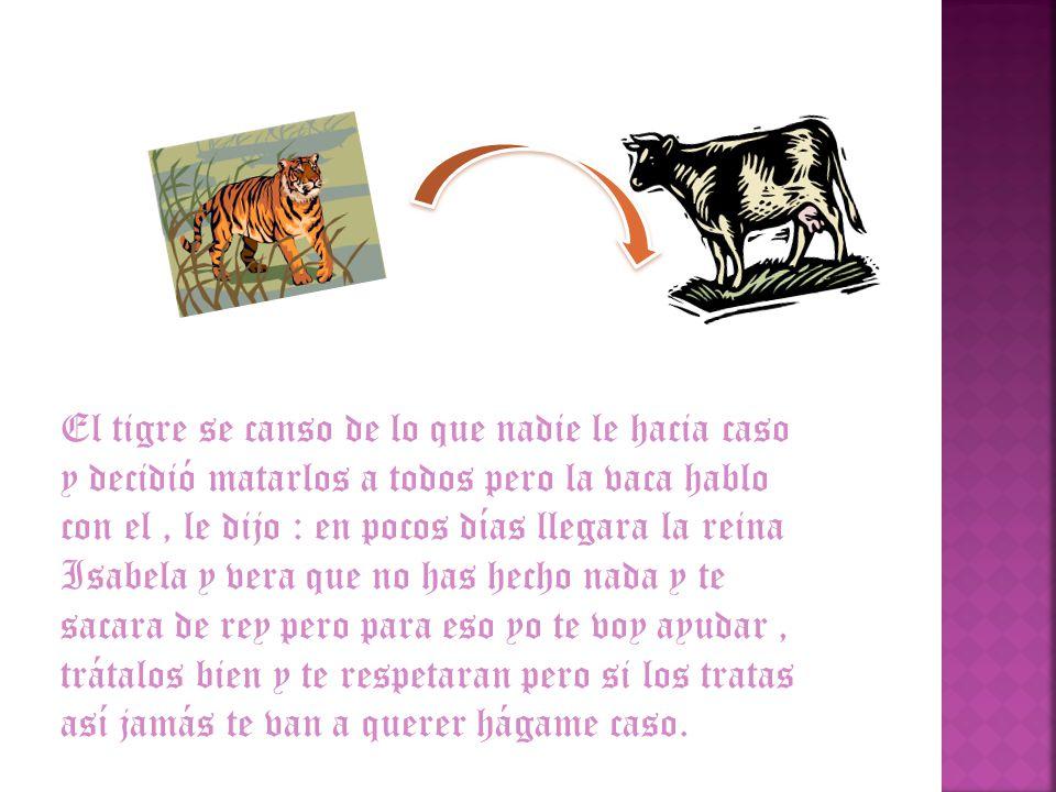 El tigre se canso de lo que nadie le hacia caso y decidió matarlos a todos pero la vaca hablo con el, le dijo : en pocos días llegara la reina Isabela