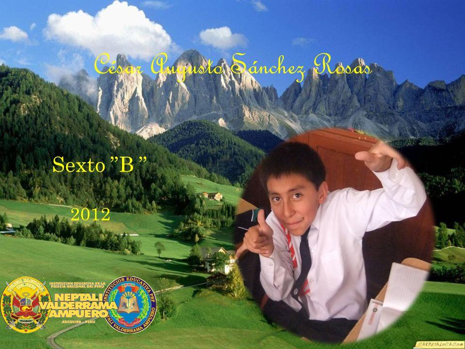 César Augusto Sánchez Rosas Sexto B 2012