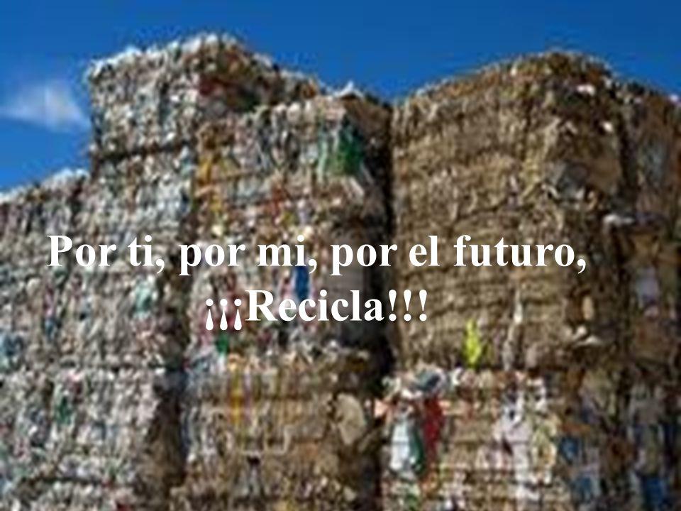 Por ti, por mi, por el futuro, ¡¡¡Recicla!!!
