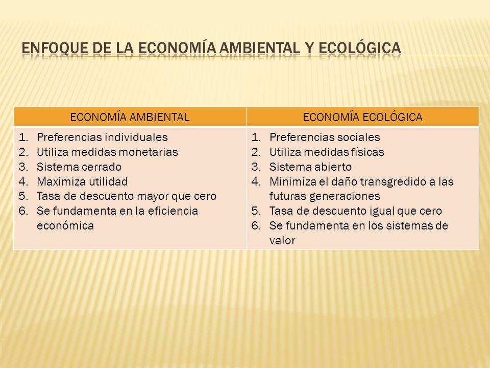 Los aportes teóricos más importantes a la economía de los RRNN y del ambiente provienen de la escuela clásica y neoclásica.