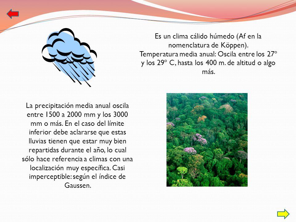 La precipitación media anual oscila entre 1500 a 2000 mm y los 3000 mm o más. En el caso del límite inferior debe aclararse que estas lluvias tienen q