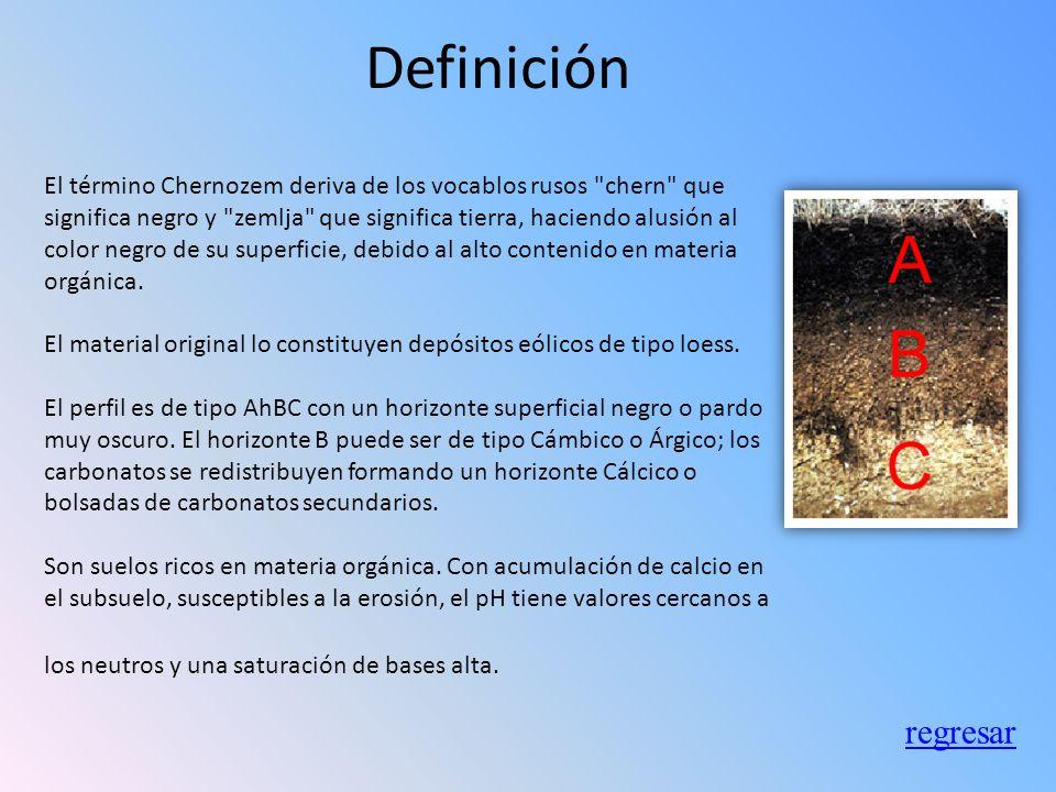 Chernozem Definición Tipos Ubicación Usos