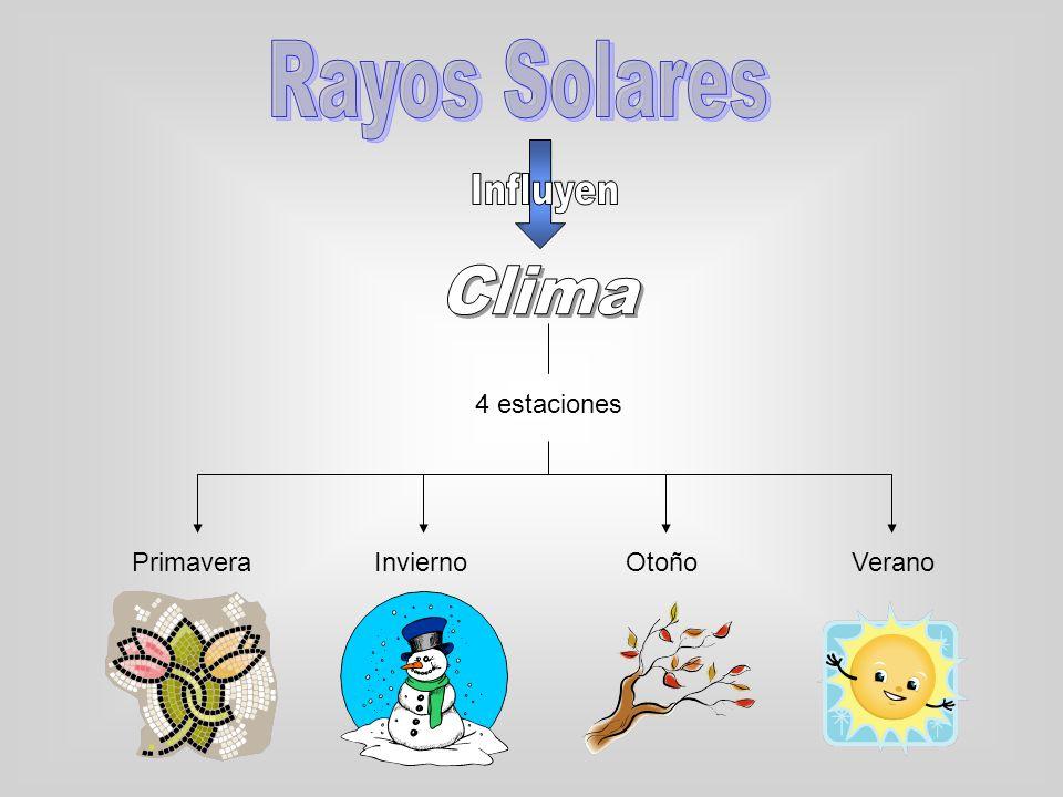 A su vez los rayos solares determinan: Husos Horarios El día y la noche Fotosíntesis de las plantas