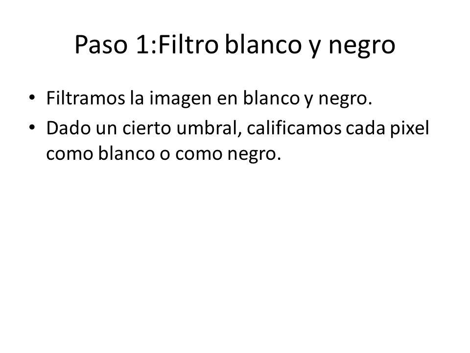 Paso 1:Filtro blanco y negro Filtramos la imagen en blanco y negro.