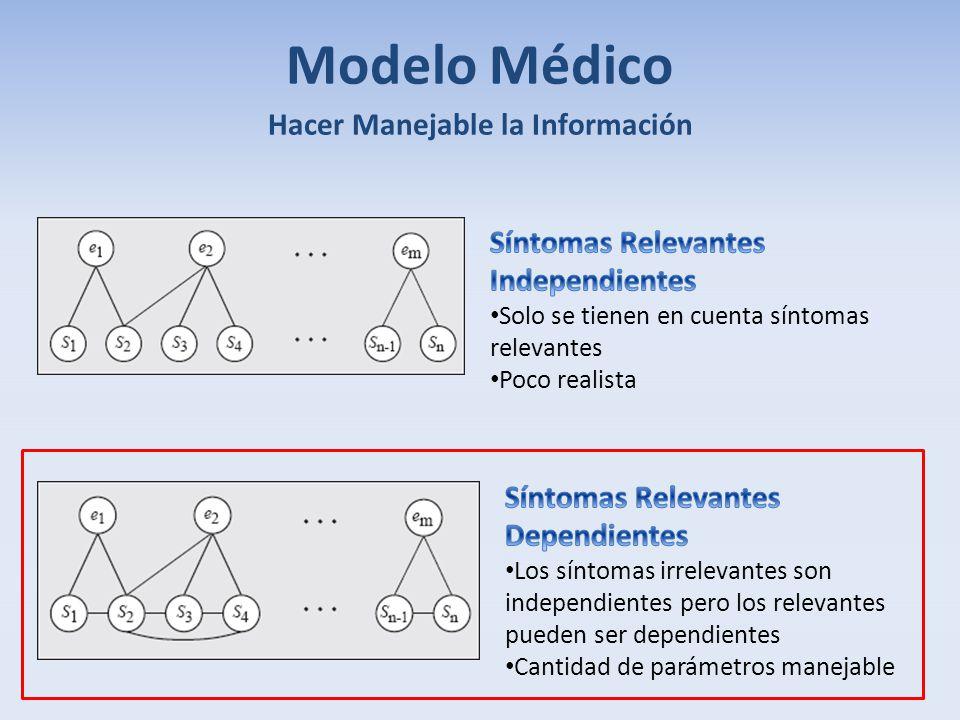 Modelo Médico Hacer Manejable la Información