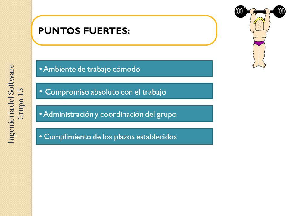 PUNTOS FUERTES: Compromiso absoluto con el trabajo Ambiente de trabajo cómodo Administración y coordinación del grupo Cumplimiento de los plazos estab