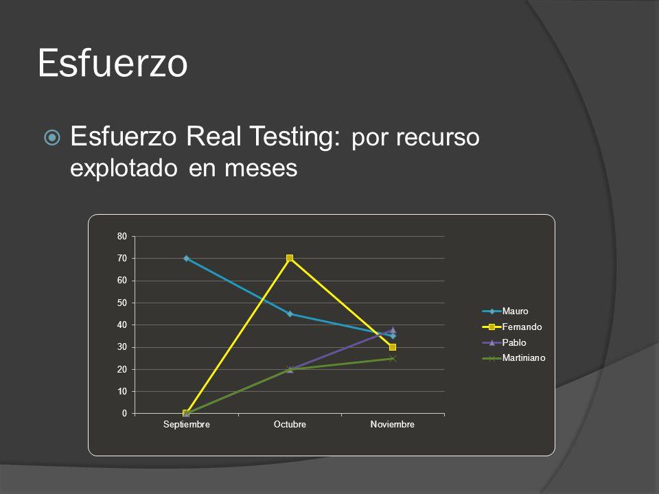 Esfuerzo Esfuerzo Real Testing: por recurso explotado en meses